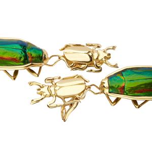 bo scarabee 2