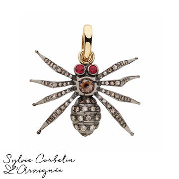 myfav araignee